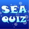 Kviz o moru
