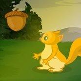 Skace Veverica